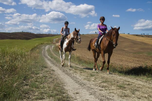 Прогулка на лошадях в спб