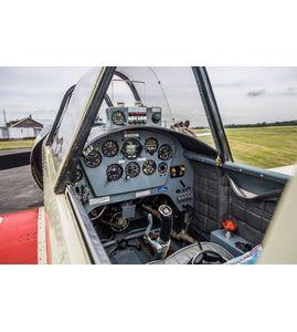 Экстремальный полет на спортивном самолете