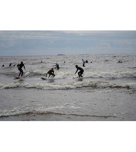обучение серфингу в спб